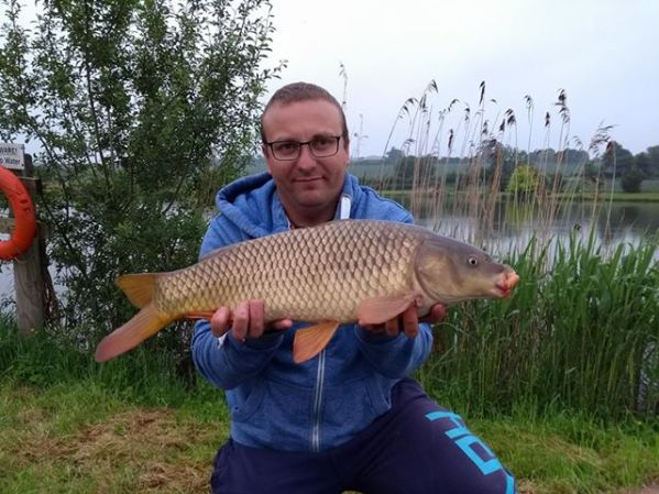 Carp caught on strawberry dumbells, close to the bank.