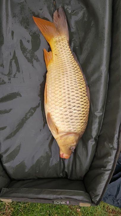 8lb carp 16th feb